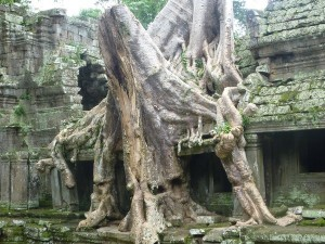 ents attacking a monastery